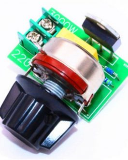 3000W Thyristor SCR Voltage Regulator Temperature Dimmer for Speed / Light (AC 220V)