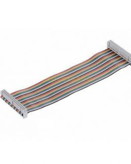 40 Pin Colorful Rainbow GPIO Female to Female Cable 20CM for Raspberry Pi