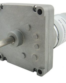 Square Gearbox Motor – 300RPM